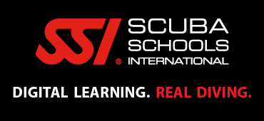 Scuba Schools International Image